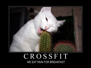 Crossfit-Pain