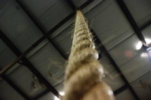 crossfit-rope-climbing-technique