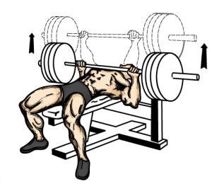 increase-bench_press